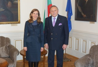 Министър Николина Ангелкова се срещна с председателя на БАН акад. Стефан Воденичаров