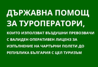 икона държавна помощ